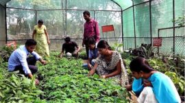 Agriculture Colleges in India