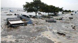 The Indian Ocean Tsunami (2004)