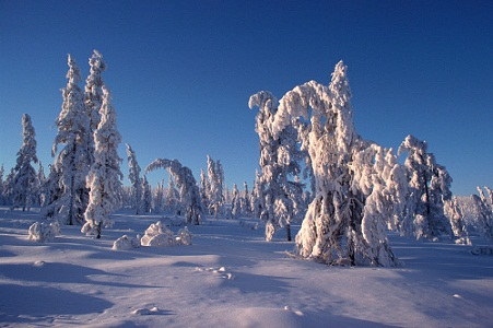 Verkhoyansk - Russia