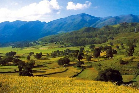 Araku Valley