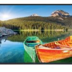 Videocon VMD50FH0ZFA 50 (124 cm) Full HD LED TV