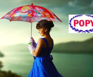 Top 10 Best Umbrella Brands With Price in India 2017
