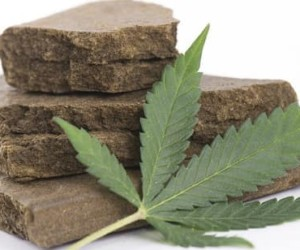 Top 10 Hashish Producing Countries in the World 2018