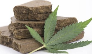 Hashish Producing Countries in the World