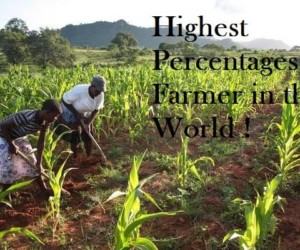 Top 10 Highest Percentages of Farmer Countries in the World
