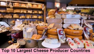 Largest Cheese Producer Countries