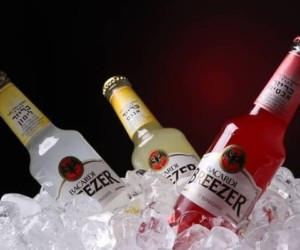 Top 10 Best Bacardi Breezer Flavours Available in India