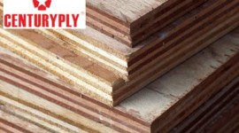Century Plyboards Ltd