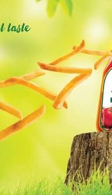 Cremica Ketchup