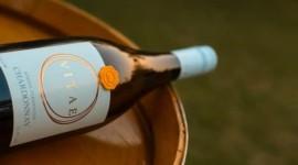 Fratelli Vitae Chardonnay