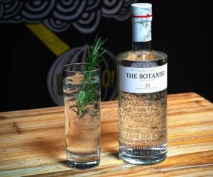 Top 10 Best Gin Brands in India